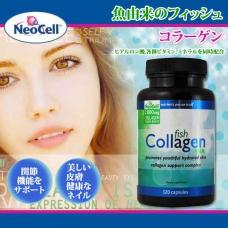 フィッシュコラーゲン ネオセル 2,400mg – 120カプセル 健康な関節機能と美しい皮膚健康なネイルをサポートするサプリメント