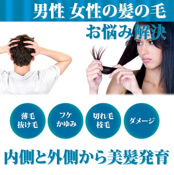 育毛,発毛,抜け毛,枝毛,ヘアケア,髪の毛
